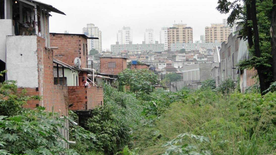 Favela Papaterra Limongi.